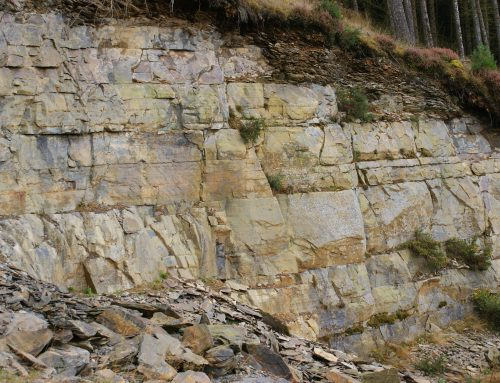 The Geology of Radnorshire